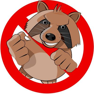 Avatar for TWIN RODENT PREVENTION AND GUTTER CLEANING