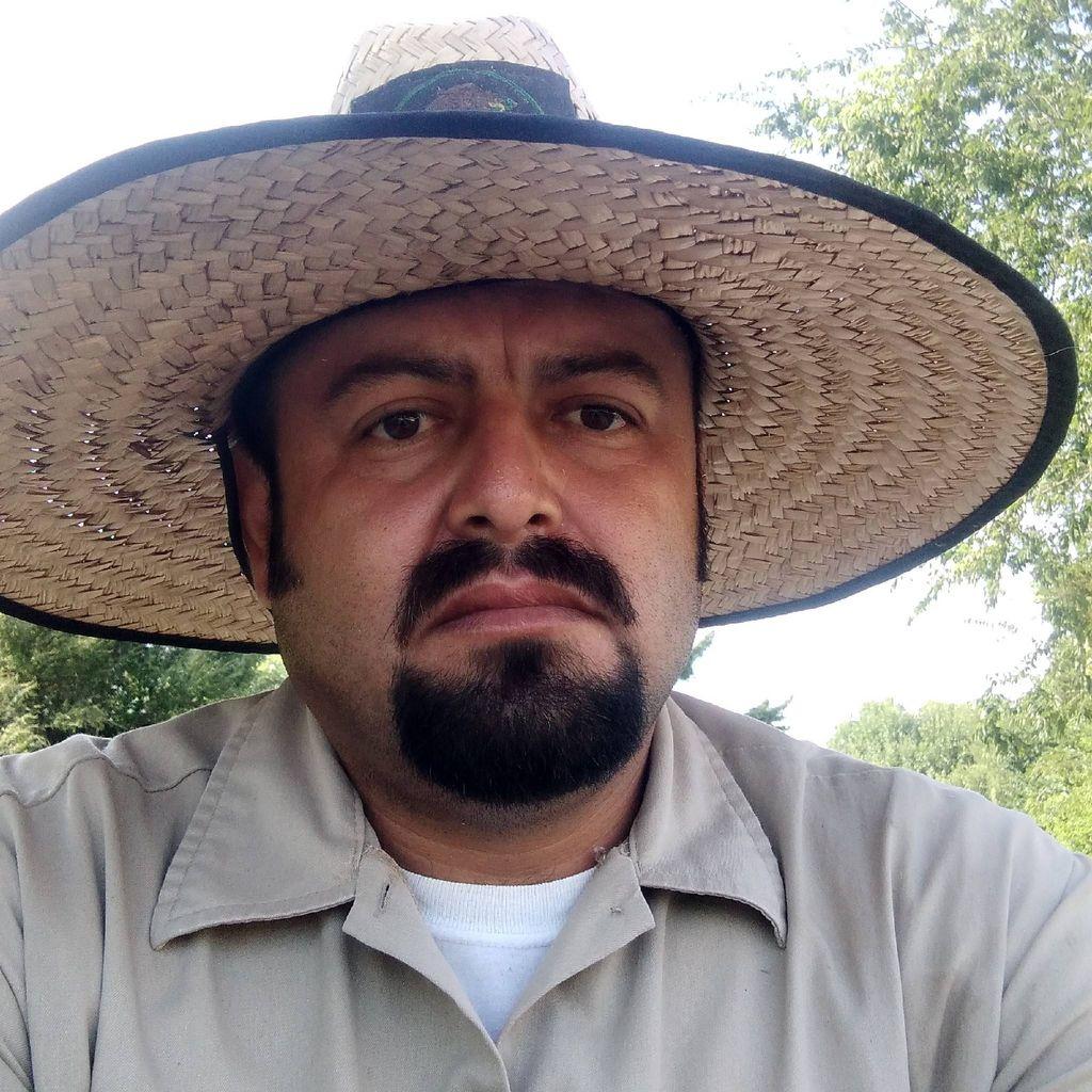 Hernandez  Lawn Services