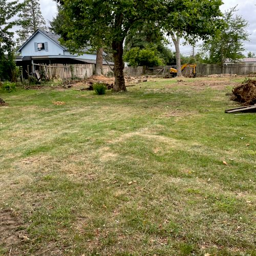Lumpy lawn with wood and garbage