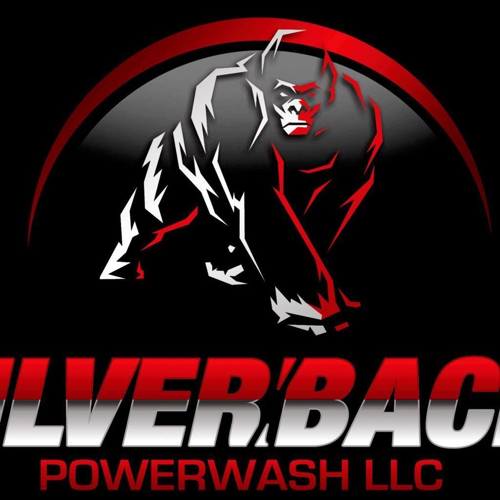 silverback powerwash llc