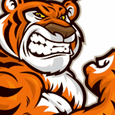 Avatar for Tiger Tossers