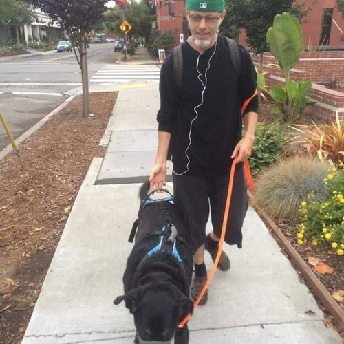 This is Jackson. He requires assistance when walking. We use a special harness so we can help him along. Good boy, Jackson!