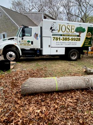Avatar for Jose Tree Removal
