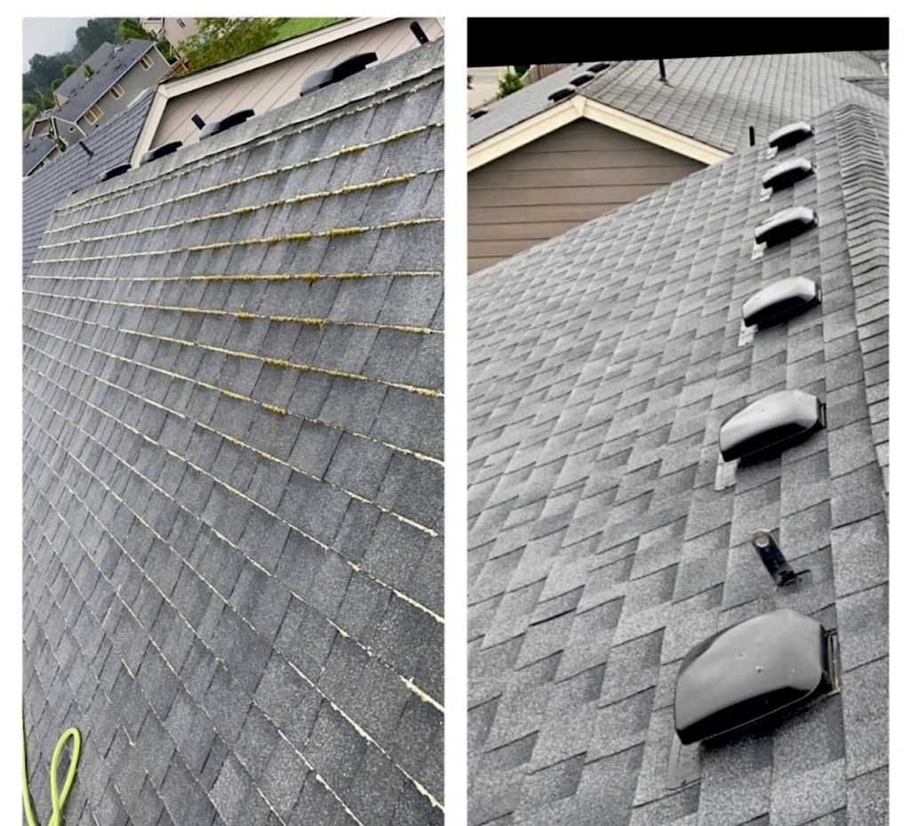 Geo Roof Cleaning.