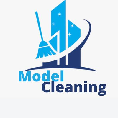 Avatar for Cleaning Model