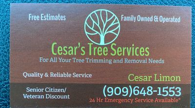 Avatar for Cesar's Tree Services