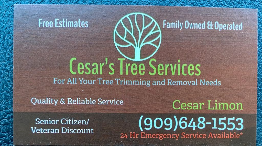 Cesar's Tree Services