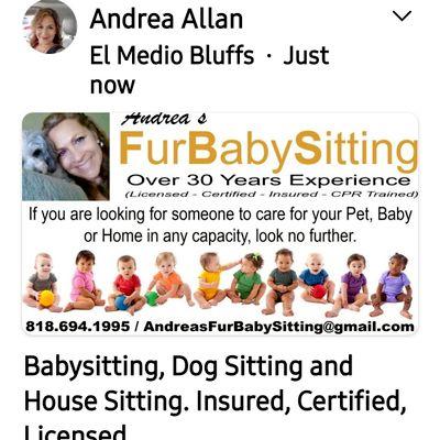 Avatar for Andreas Fur Babysitting