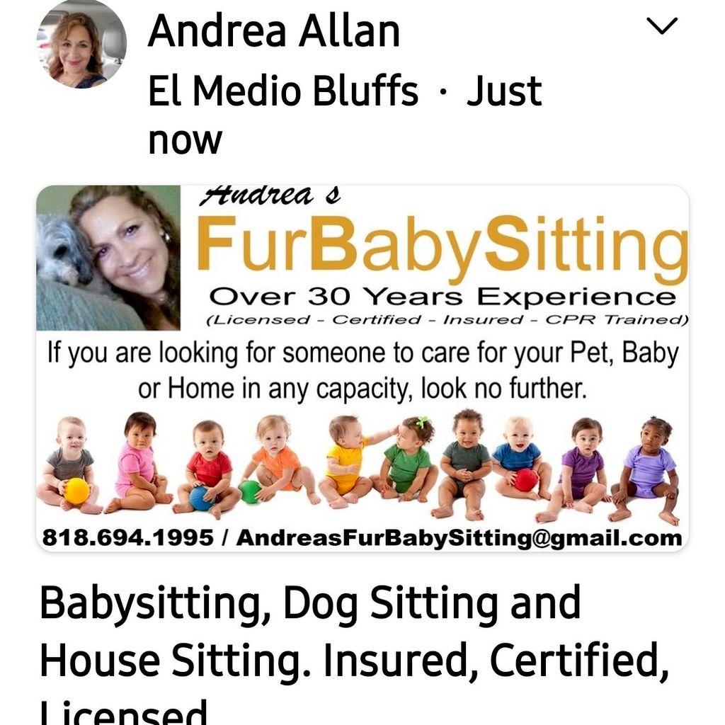 Andreas Fur Babysitting