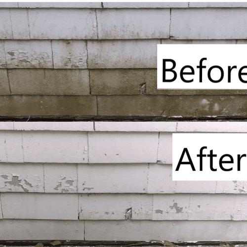 Painted Cedar Siding