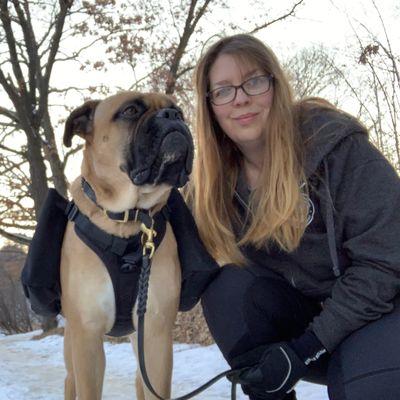 Avatar for J&J's Dog Walking, Training and Pet Sitting