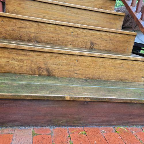 Stairs before (Alagae, mildew & tree sap))