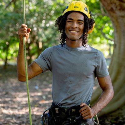 Avatar for Subtropical Arborists