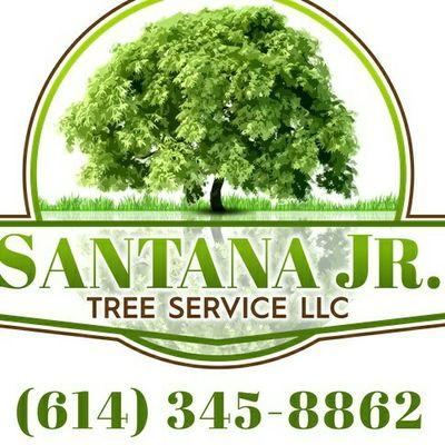 Avatar for SANTANA JR TREE SERVICE LLC