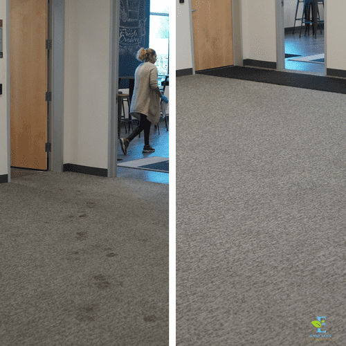 Commercial Dry Carpet Cleaning