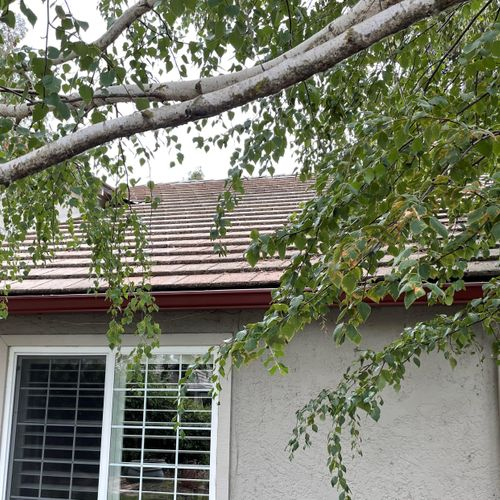 """New 6"""" K-Style Seamless Gutters."""