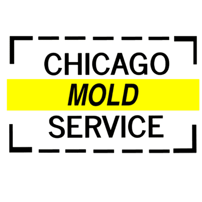 Avatar for Chicago Mold Service