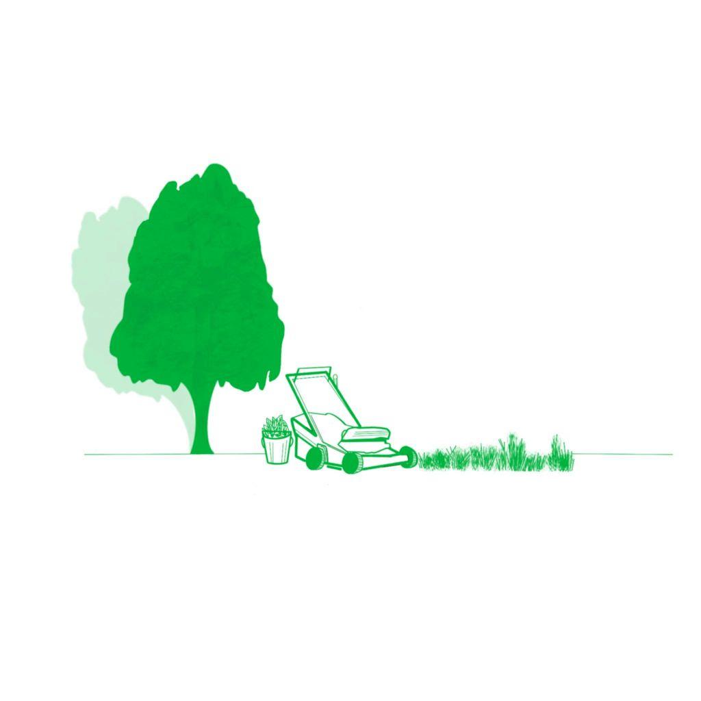 Iconic Landscaping LLC