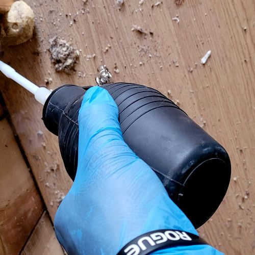 treating for bedbugs cracks & crevices