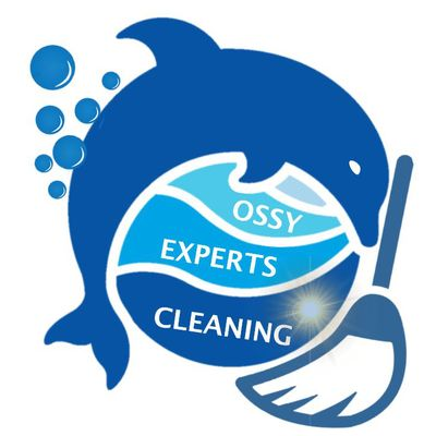 Avatar for Ossy cleaning Experts LLC