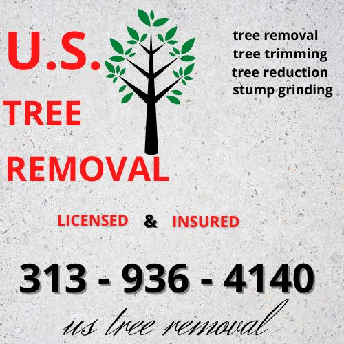 Us tree removal