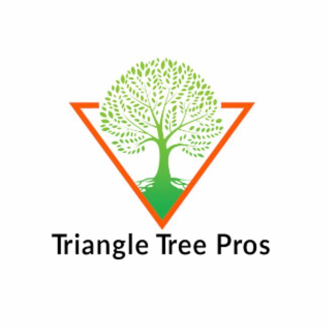 Triangle tree pro
