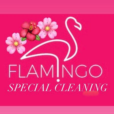 Avatar for 🦩🌸Flamingos Special Cleaning 🦩🌸