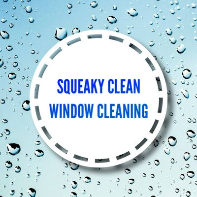 Avatar for Squeaky Clean Window Cleaning