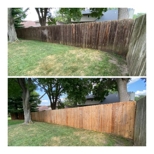 Fence Cleaning and Restoration