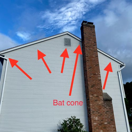 Bat entry and roosting points