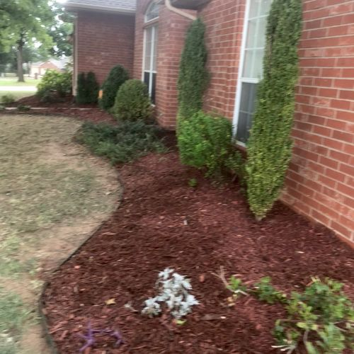 after cleaning and applying new mulch