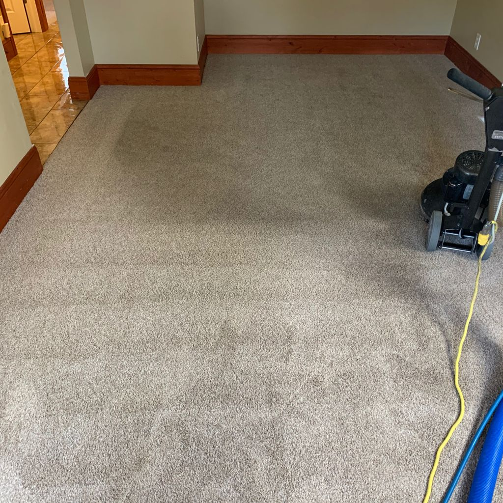A Fresh new Look Carpet Cleaning