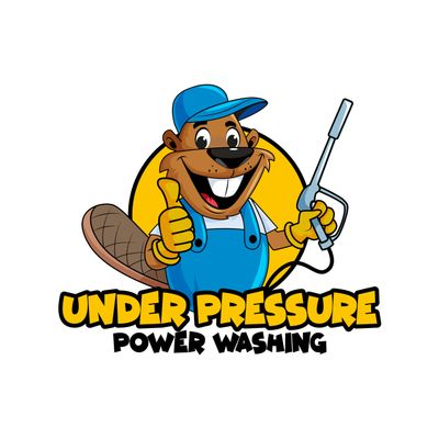 Avatar for Under Pressure Power Washing SFL