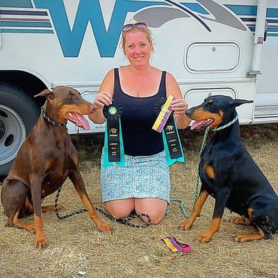 Avatar for Day Hill Dog Training, LLC