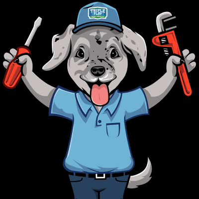 Avatar for Triple Play Home Services