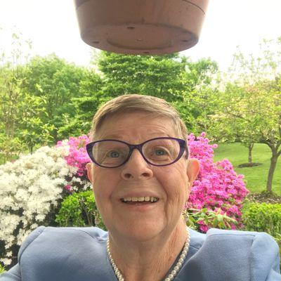 Avatar for Carol Shirley, Wedding Officiant,