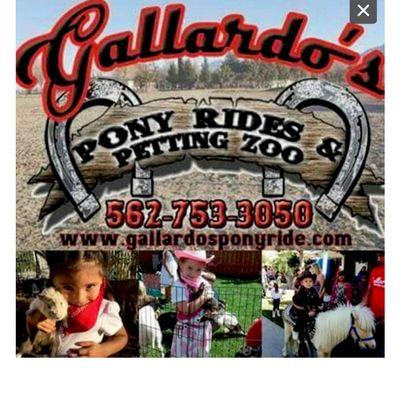 Avatar for Gallardo's Pony rides and petting zoo