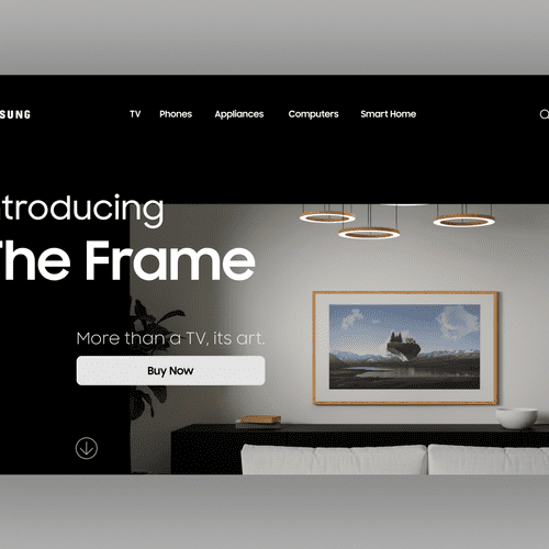 The Frame Landing Page Concept