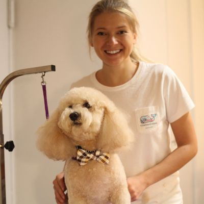Avatar for Fluf Love Dog Grooming