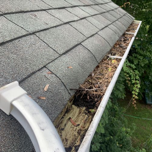 Look at how gunked up these gutters were!
