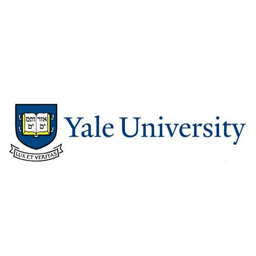 I graduated from Yale University, cum laude and with distinction in my major.