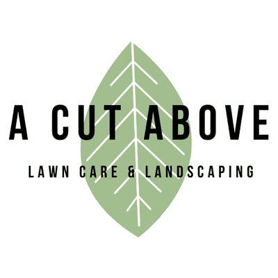 Avatar for A Cut Above