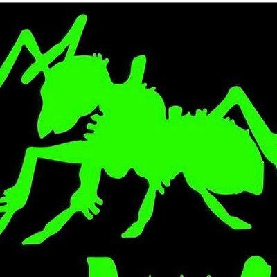 Avatar for Potomac Pest and Termite Control-VA Branch