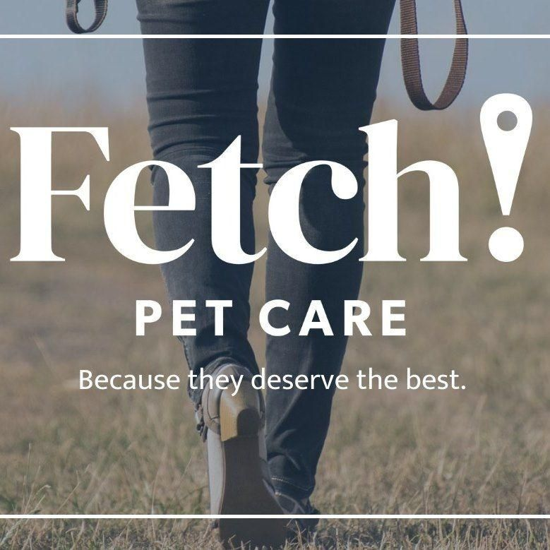 Fetch! Pet Care of Clear Lake