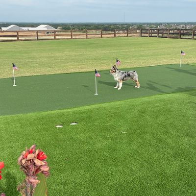 Avatar for All American Turf Solutions