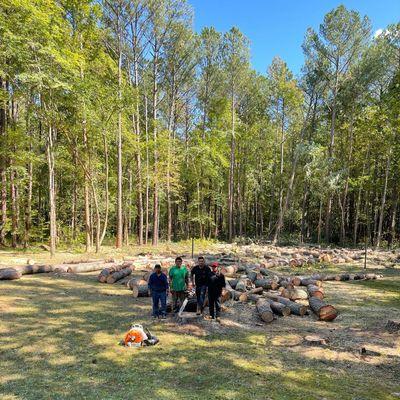 Avatar for Arita's tree Service LLC