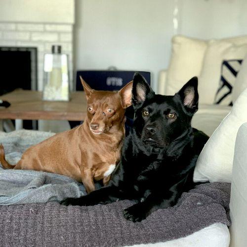 Luna & Winnie