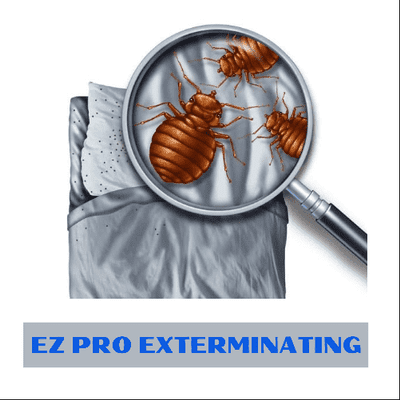 Avatar for Ez Pro Exterminating
