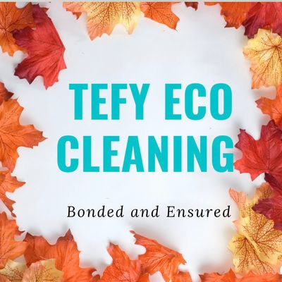 Avatar for TEFY  ECO CLEANING SERVICE