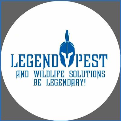 Avatar for Legend Pest and Wildlife Solutions LLC